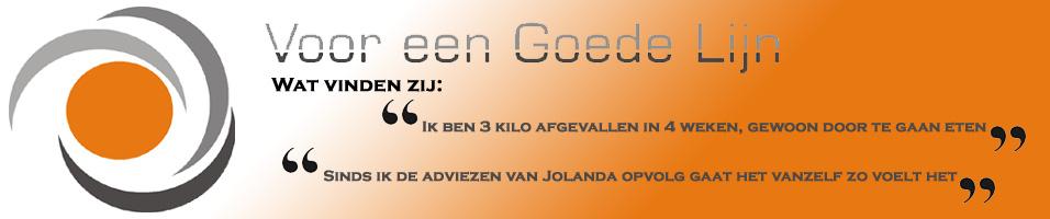 http://www.vooreengoedelijn.nl/wordpress/wp-content/uploads/2013/06/slider-watvindenzij.jpg